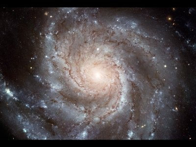 Dark Matter in Galaxies: The Last Mystery